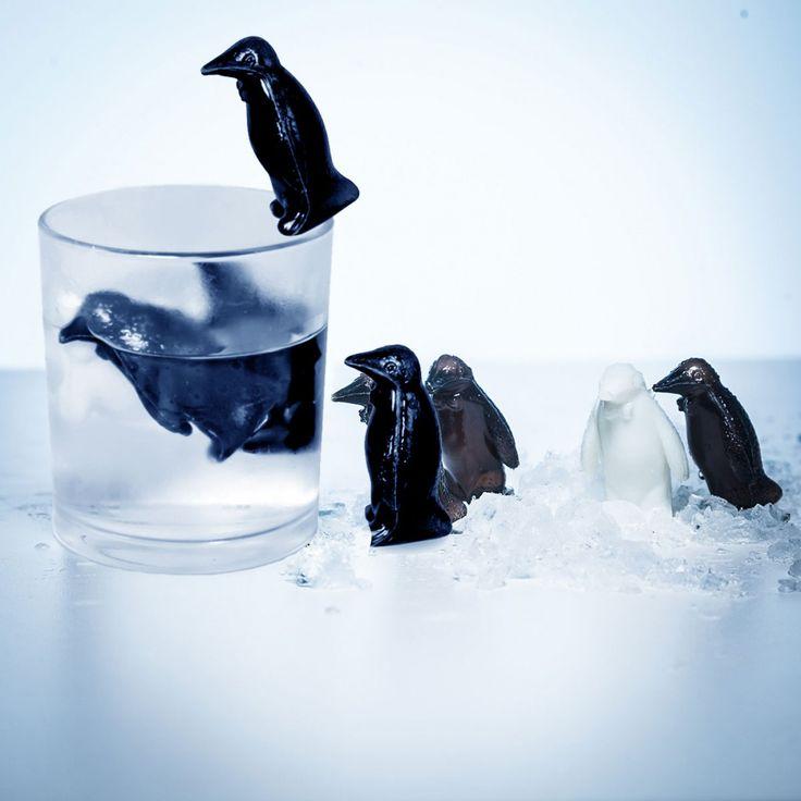18 pingouins refroidisseurs hyper cool qui vont venir rafraichir vos boissons sans les diluer. Au-revoir les glaçons traditionnels!