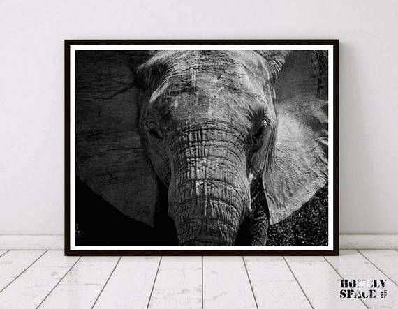25+ unique Elephant wall art ideas on Pinterest ...