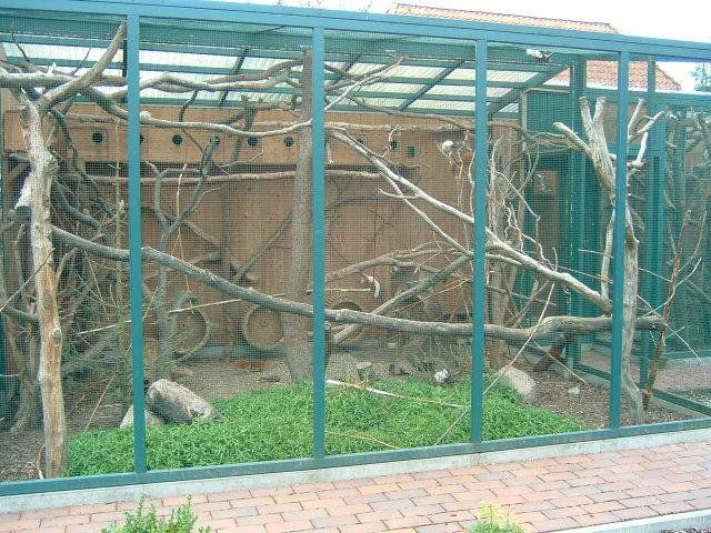 14 best Bird aviary and decorations images on Pinterest ...