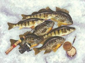 Ice Fishing Tips, , Ice Fishing Tackle and Equipment