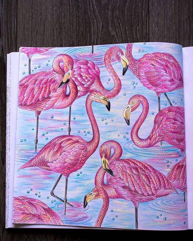 Milliemarotta Coloringbookforadults Coloringbooks Coloring Adultcoloringbooks Adultcoloringbook Flamingo Flamingos