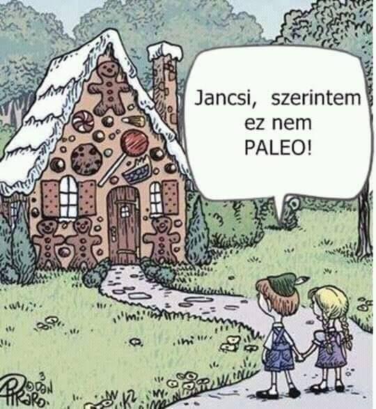 Jancsi és Juliska #paleo #paleovicc #paleomese #nempaleo || Haha :D