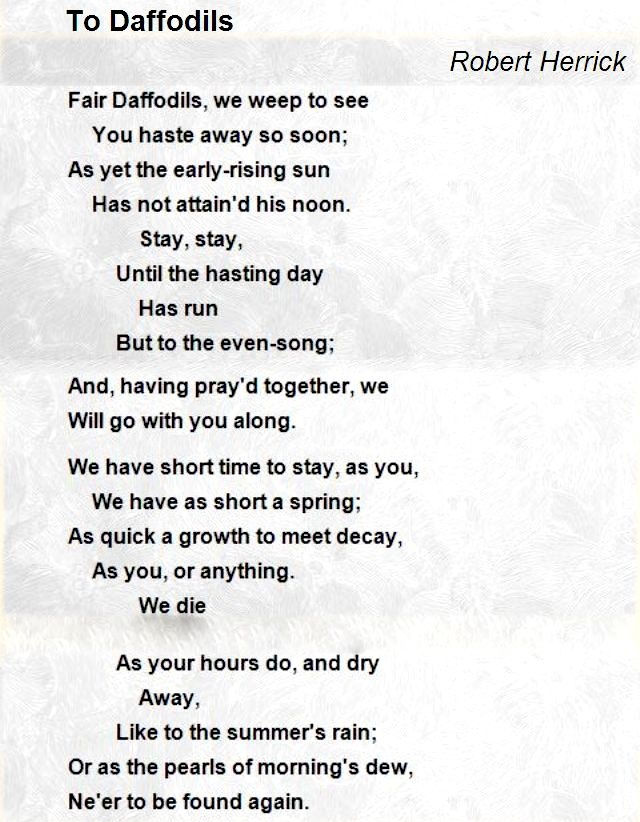 To Daffodils Robert Herrick 10 Sentences Word Building Daffodils