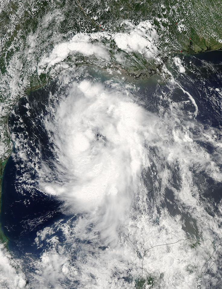 @NASA sees Tropical Storm Bill making landfall in Texas: http://bit.ly/1G1faaQ