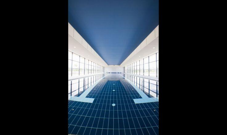 Kooindah Waters Residential Golf Resort #resort #pool #kooindah #ptwarchitects