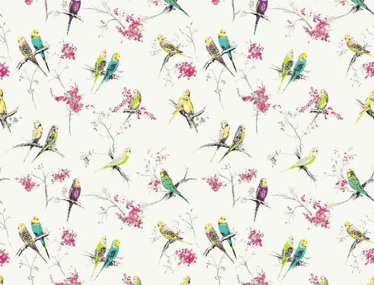 chirpy by blendworth uk