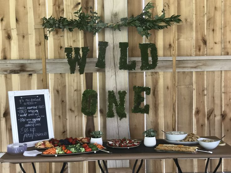 Wild One Themed First Birthday Party