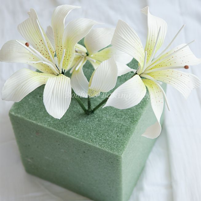 Learn to create beautiful Tiger Lilies with Bobbie and Sydney at Bobbie's Baking Blog.