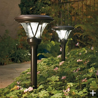 17 Best Ideas About Solar Path Lights On Pinterest Solar Lights