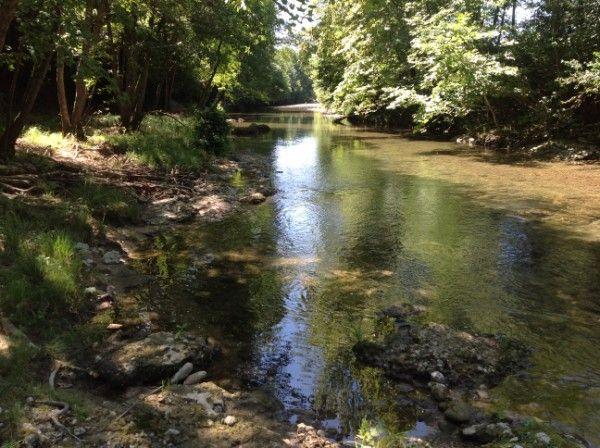 """Giunti alle porte di Falzé di Piave, in località Sant'Anna, ci godiamo lo spettacolo del fiume Soligo che proprio qui confluisce nelle acque del Piave. E' un luogo davvero incantevole quello che ci troviamo ad ammirare, con acque limpide e fresche che lambiscono una vegetazione rigogliosa e incontaminata. l Soligo è alimentato dal canale artificiale """"La Tajada"""" che nasce dai due laghi di Revine Lago e dopo aver percorso la Valmareno piega verso sud in località Follina andando a bagnare il…"""