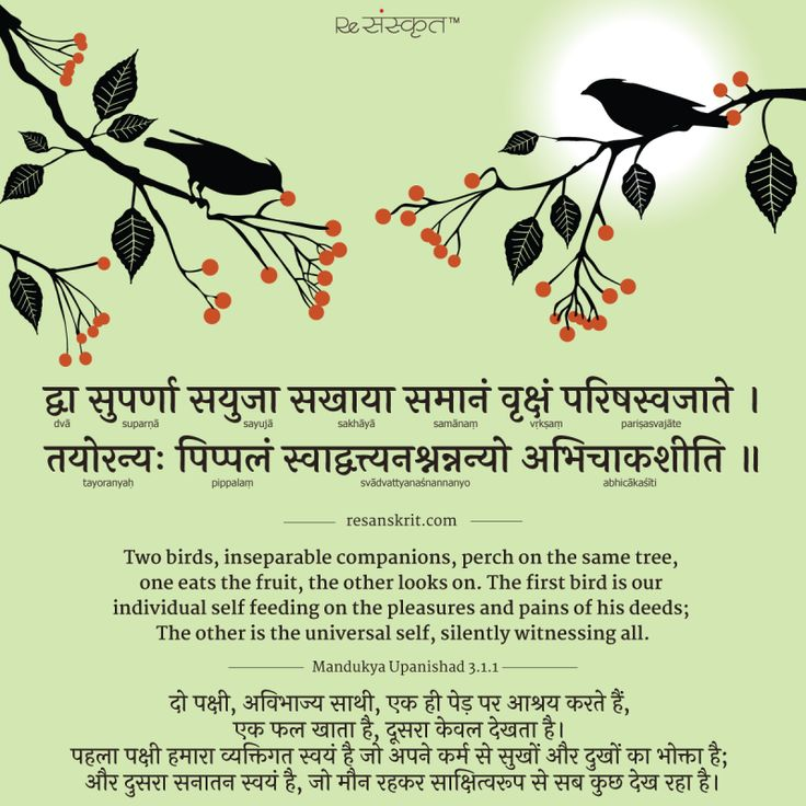A Story of Two Birds Quote from Mandukya Upanishad