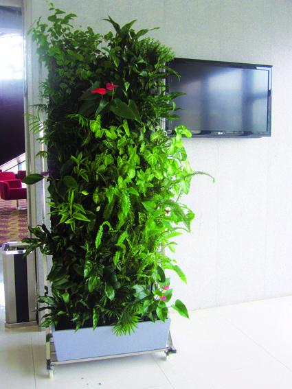 Mur végétal en kit (c) EDN