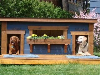 Duplex dog house. My doggies will have one this year.