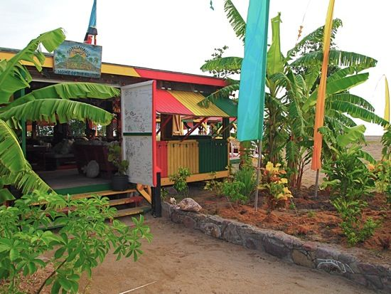 Sunshine's Beach Bar, Nevis - always the best place to be! Bee stings! THIS PLACE WAS FUNNNN!