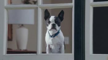 Marshalls TV Spot, 'Mr. Bonejangles' - Thumbnail 2