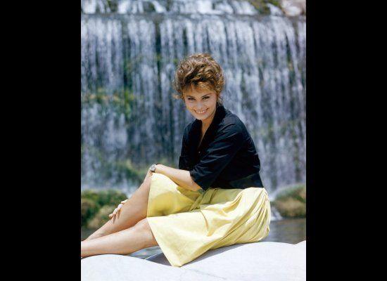 La belle Sophia Loren