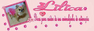 layout para blog e sites: Blogs de Dicas para Cuidar de Animais Domésticos