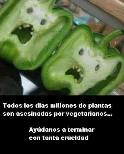 #meme #humor #vegetariano #orgánico