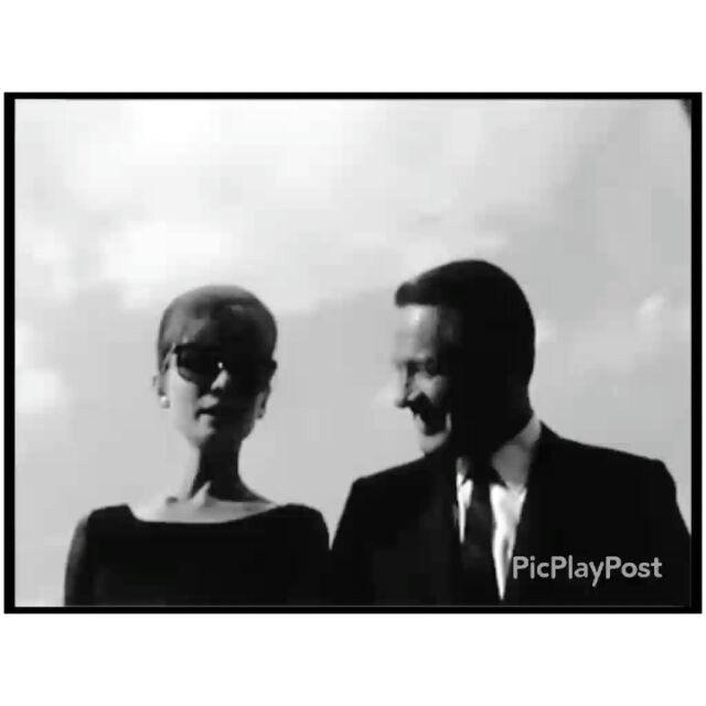 """Happy birthday to Audrey's co-star in """"Paris When it Sizzles"""" and """"Sabrina"""", William Holden ❤❤❤ ---- #audreyhepburn #actress #williamholden #billholden #actor #oldhollywood #oldmovies #goldenage #vintage #vintagegirl #vintagefashion #vintagelove #retro #vintagehollywood #goldenhollywood #pariswhenitsizzles #pwis"""