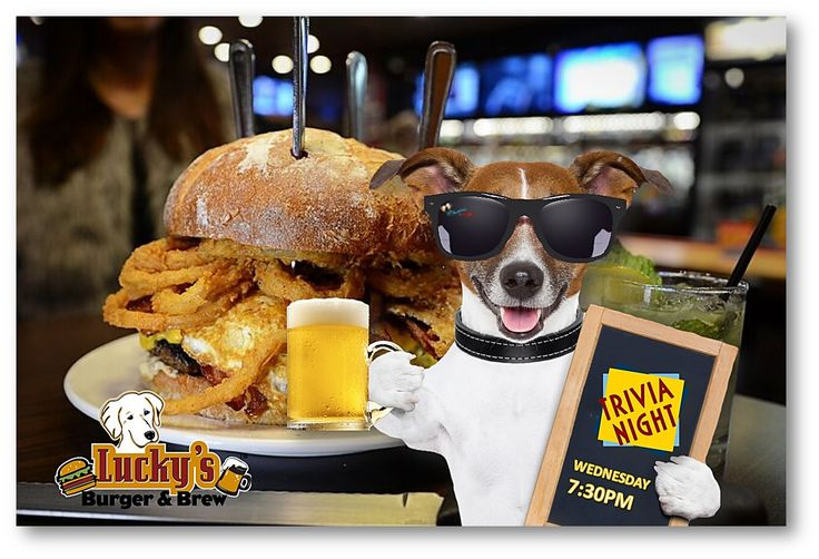 Woof! It's Hump Day... Stop by Lucky's Burger & Brew Brookhaven for #Trivia TONIGHT @ 7:30! #LuckysBurgerandBrew #HumpDay #IceColdBeer #Cocktails #BestBurgerATL 🍔🍟🍺 🍸