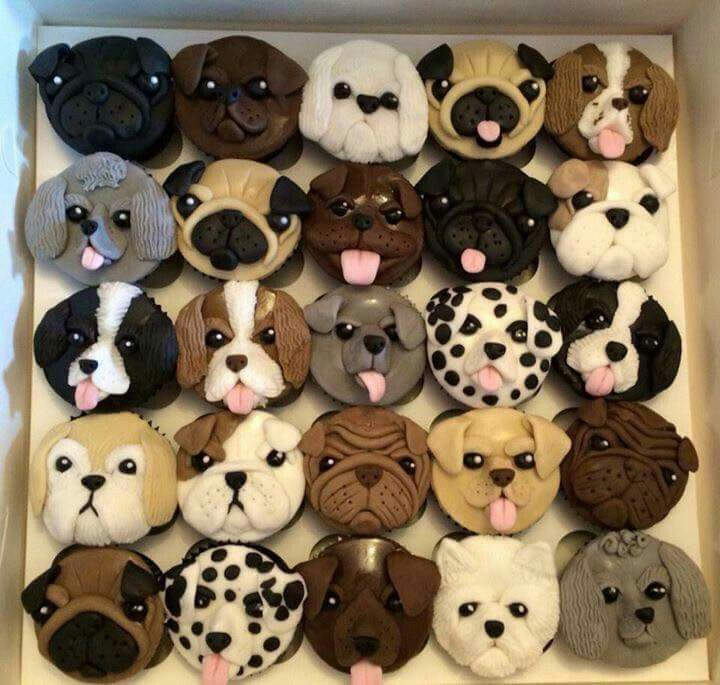Puppy cupcakes- I know this are not (exactly) animals but either way, real or not real, I want to gobble them up!!!! (;