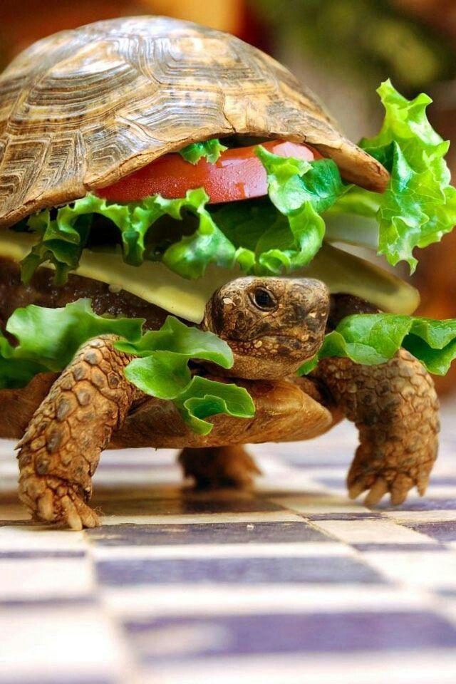 Fast food ;)