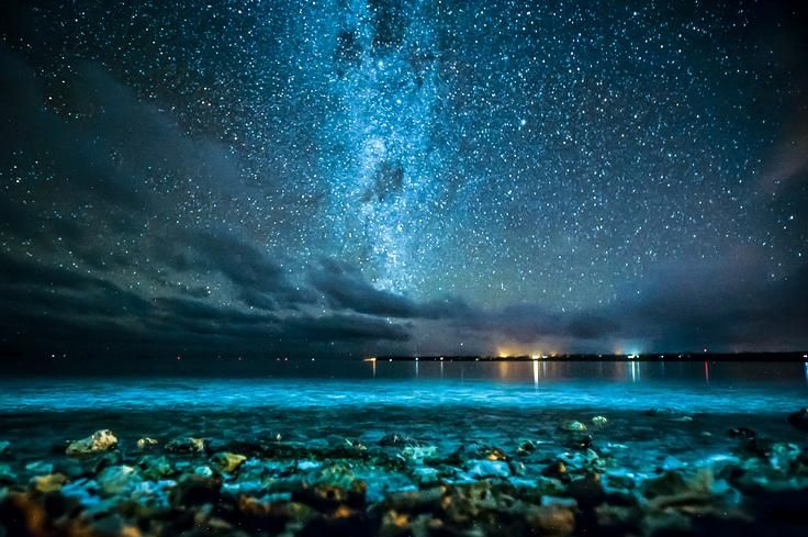 Starstruck in Aitutaki Photo by Leanne Kelly - 2016 National Geographic Travel Photographer of the Year