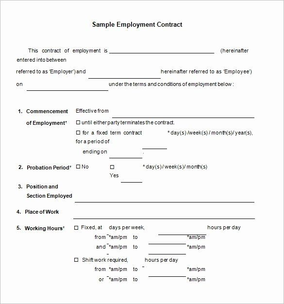 Temporary Employment Contract Template In 2020 Contract Template