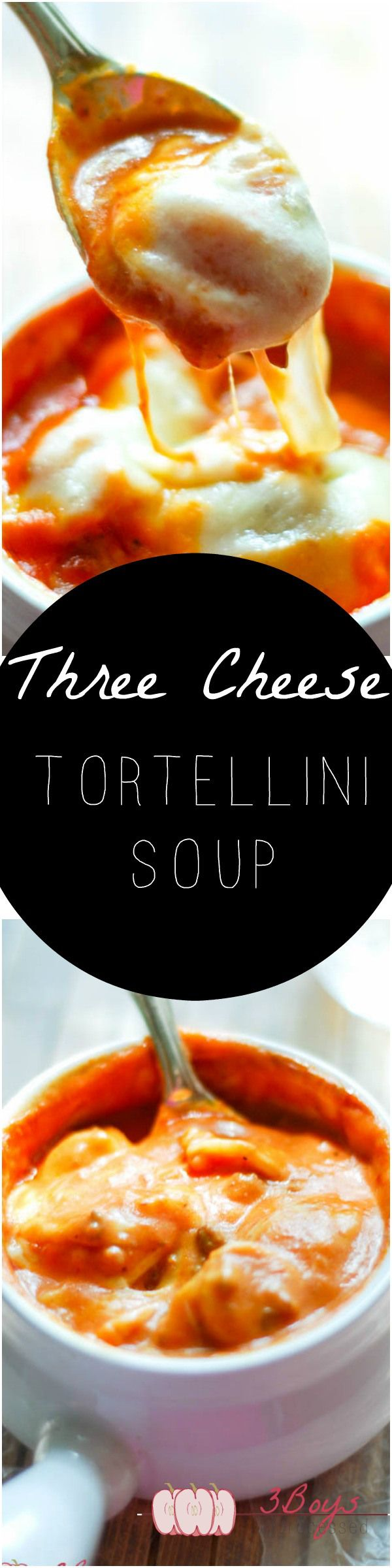 Three Cheese Tortellini Soup    A delicious blend of ground beef, cheese, and tortellini smothered in a thick and creamy tomato soup. The ultimate comfort soup!    www.3boysunprocessed.com