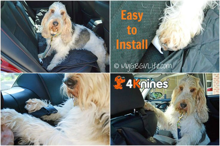 5 Reasons to cover your seat with a 4Knines Dog Seat Cover http://mygbgvlife.com/2015/08/27/5-reasons-to-cover-your-seat/
