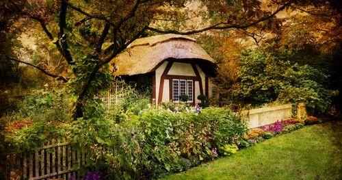 Are you more zen garden or vegetable garden? Discover your garden design personality!