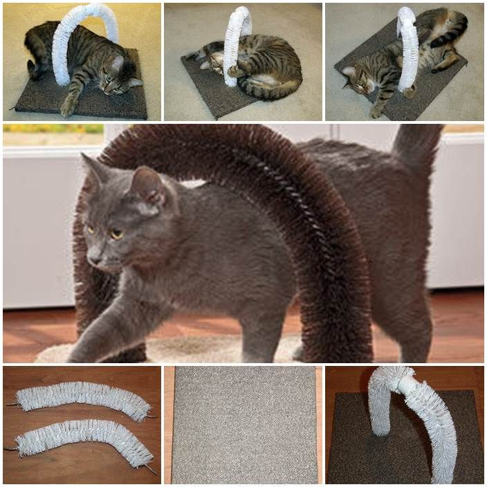 """DIY cat self-petting station. Need: 2 toilet bowl brushes, a board roughly 12""""x12"""", a block of wood 1""""x1""""x1"""", carpet to cover the board, guerrilla glue or hot glue, a Staple gun and Spraypaint (optional)."""