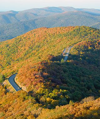 """America's Best Fall Color Drives"" by Travel + Leisure in October 2010 included Skyline Drive through Shenandoah National Park. In the fall, monitor www.Virginia.org/fall/ for foliage updates!"