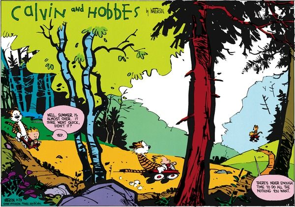 THE DAILY CALVIN: Calvin And Hobbes, August 28, 1988