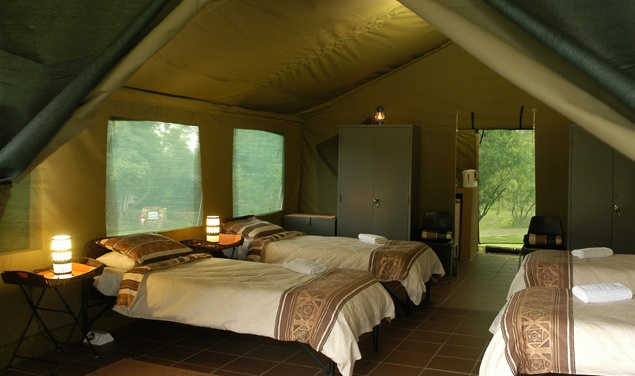 Bush Willow Tented Camp team building venue in Muldersdrift