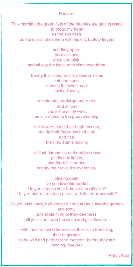 Mary Oliver Love Quotes Amusing 78 Best Words Of Mary Oliver Images On Pinterest  Words Poems