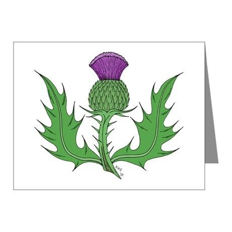 """My """"Thistle"""" sold yet again, but this time, NOT on a sticker... SOLD 7/21/2017 through CafePress to a customer in NY, US: one Thistle Note Cards 10 Pack. #CafePress #sold #note_cards #cards #thistle #thistle_flower #floral_emblem_of_Scotland"""