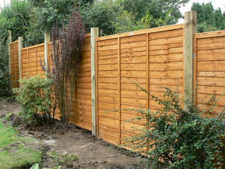 The 25 best plastic garden fencing ideas on pinterest grey fences small garden drainage and - Personalized garden fences ideas as cute and creative yard border ...