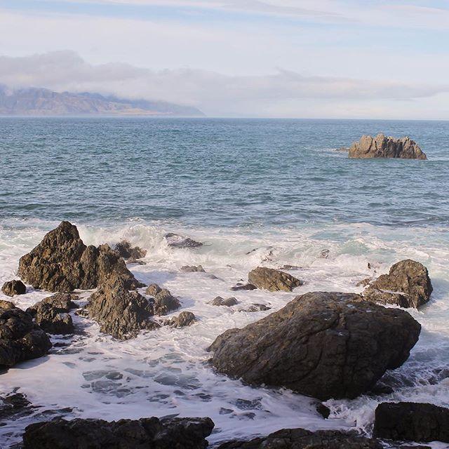 Photo Photos Nature Rocks Seals Redrocks Photography Sea Ocean Sky Newzealand Sky Pins Photo Photos With Images Rock Photography Ocean Sky Sky