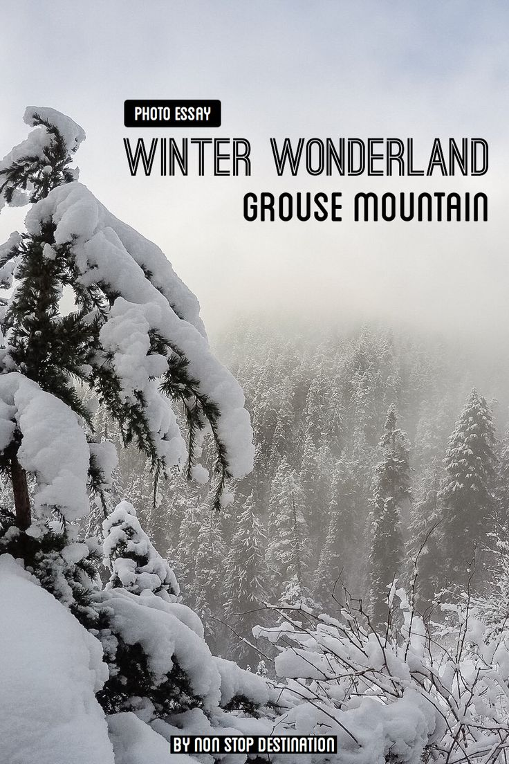 best images about non stop destination photo essay winter wonderland on grouse mountain