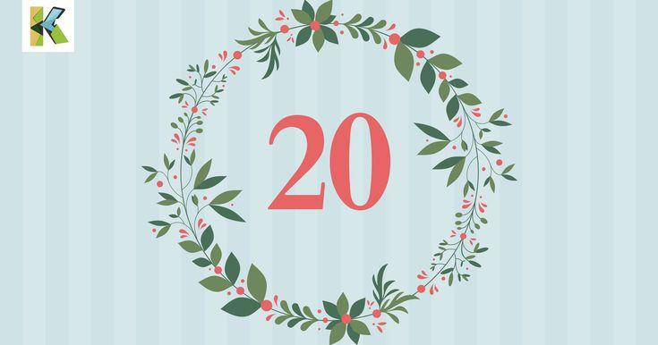 #adventskalender #weihnachten #weihnachtsgans #gans #martinsgans #rezept #heiligabend #rezepte #recipe #yummy #food