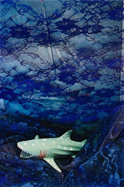 © Mary Macpherson.  At Sea.  1999.