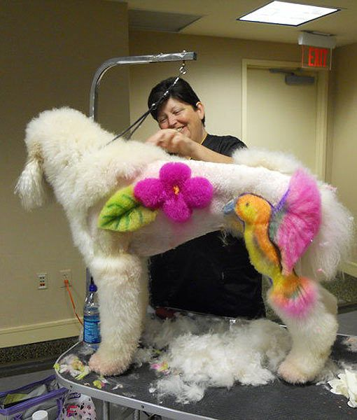 """""""Little does this groomer know, I am going to make the exact same designs out of her hair when she falls asleep."""""""