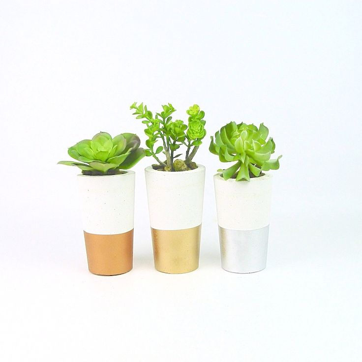 Too cute!  Set of 3 concrete succulent planters.  White base, dipped in metallic copper, gold and silver.  Available now at www.ifoundlove.com.au (http://www.ifoundlove.com.au/tall-concrete-pot-set-white-metallic/)