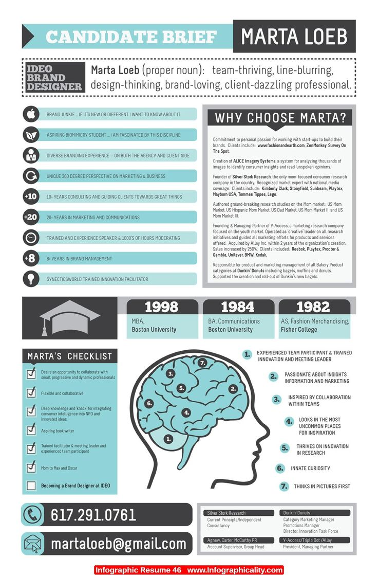 Best Infographic Resume Ideas Images On Pinterest Infographic - Resume infographic