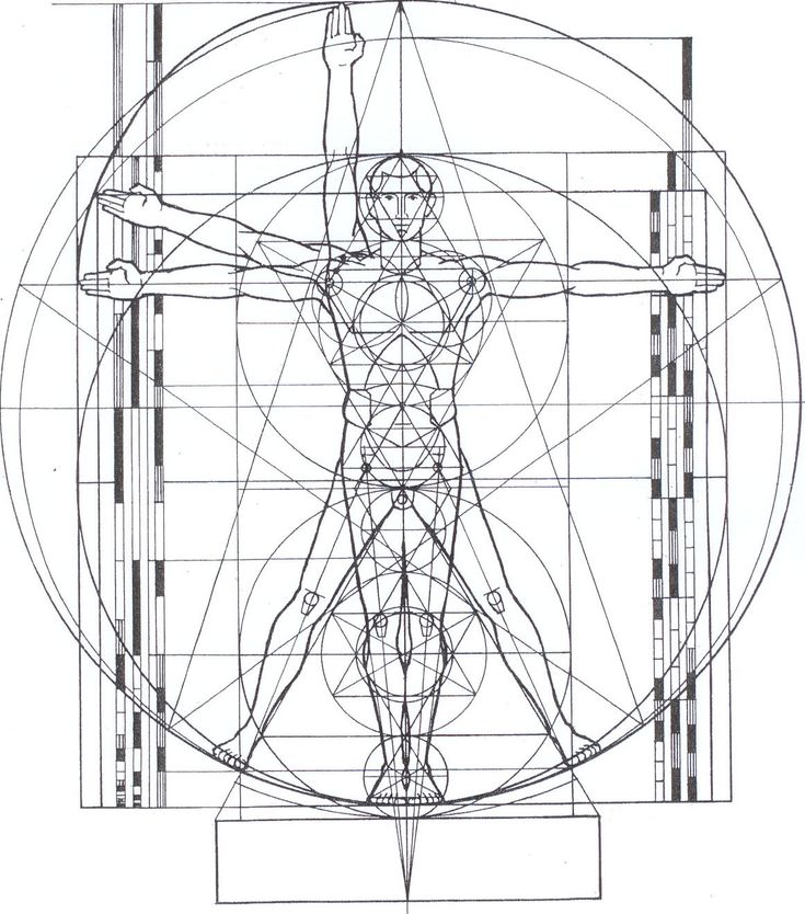 Google Image Result for http://aboutsacredgeometry.com/wp-content/uploads/2011/07/Figure-5-The-Vitruvian-Man-cropped-and-erased-measurements.jpg