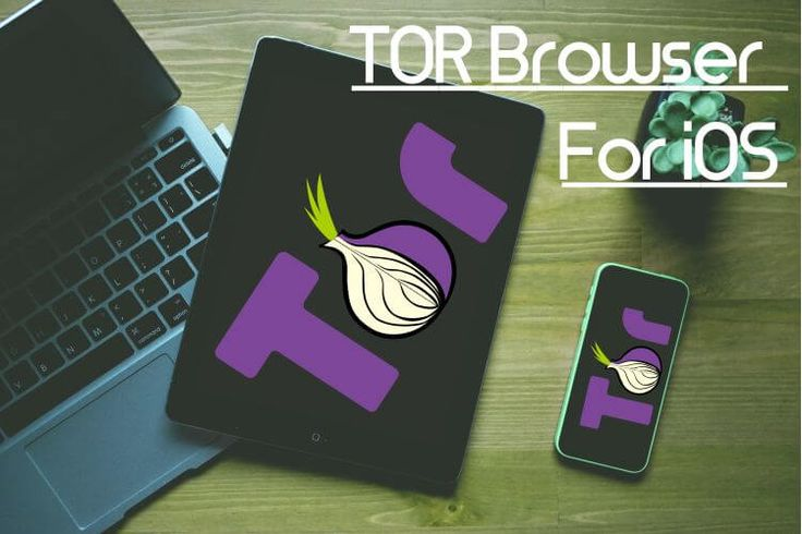 Tor browser iphone скачать hidra настройка tor browser торрент