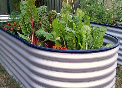 Water Tank Garden - add some wheels and it's mobile!!