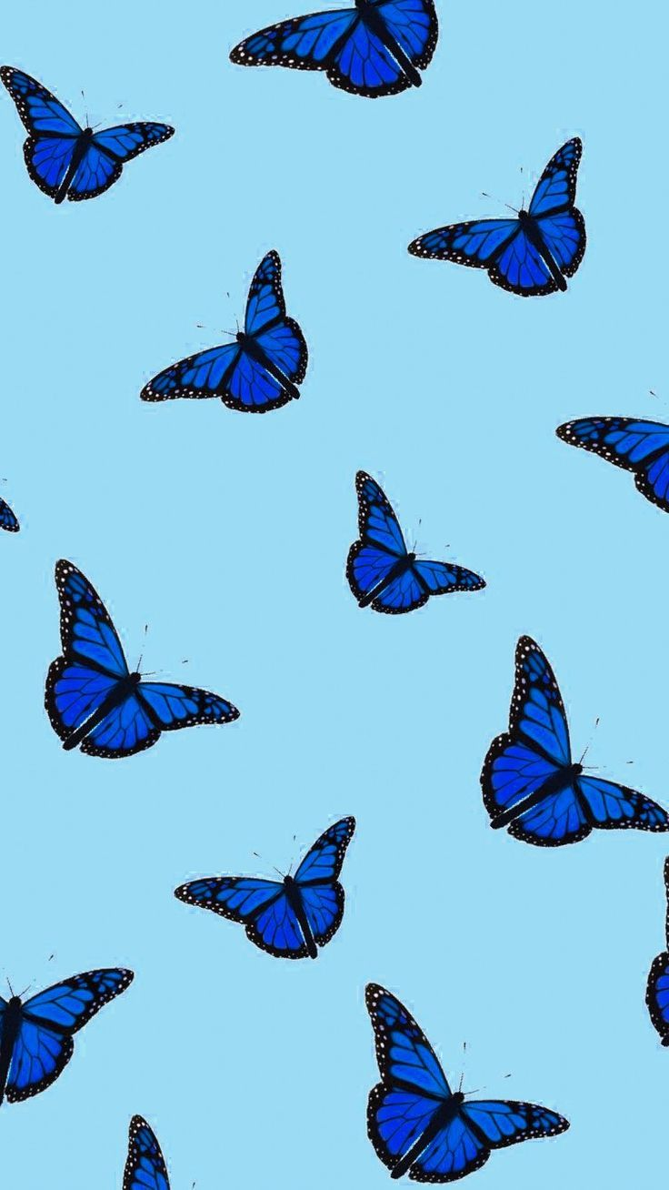Pin By Ama La Vida On Creativity Colors Inspiration Butterfly Wallpaper Iphone Aesthetic Iphone Wallpaper Butterfly Wallpaper