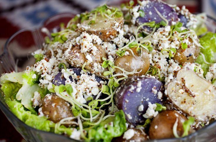 Mikset potetsalat med skjørost
